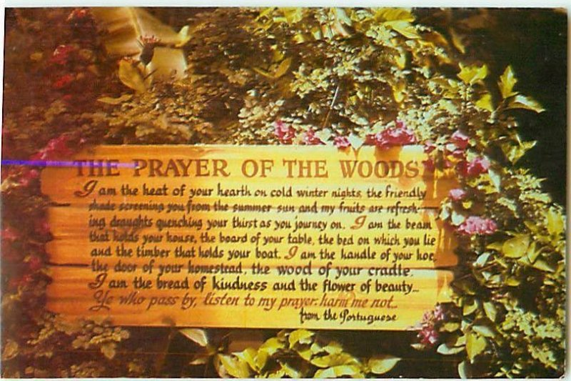 Prayer of the Woods of Your Cradle From Portuguese