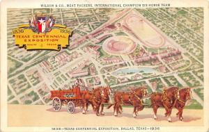 Dallas Texas Centennial Exposition~Wilson Co Meat Packers Champion Horse Team~Pc