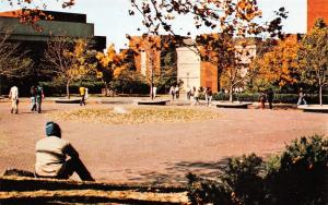 Edwardsville IL~Southern Illinois University in Fall~Chemistry Department~1970s