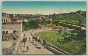 Jerusalem Israel~Handcolored~Camels & Pedestrians on Wall @ Edge of City~c1910