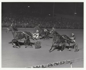 E. RUTHERFORD, New Jersey, Meadowlands Harness Race Track, LUCIOUS LEA wins