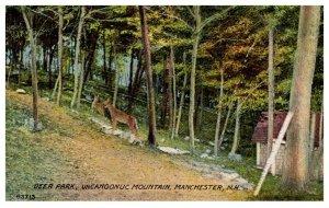 New Hampshire  Deer Park