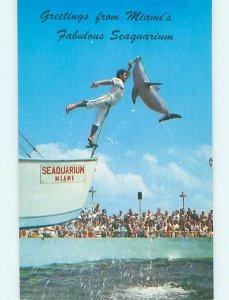 Pre-1980 SEAQUARIUM SCENE Miami Florida FL AF9463-12