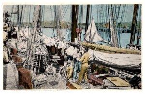 Massachusetts Gloucester  unloading fish