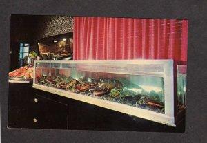 LA T Pittari's Restaurant Pittari Lobsters New Orleans Louisiana Postcard