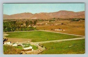 Reno NV- Nevada, Truckee Meadows Fertile Valley, Chrome Postcard