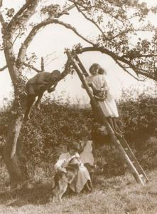 Children Picking Fruit with Dog in Whitby Yorkshire Earliest Photo Rare Postcard