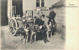 Belgium Bruges Laitière flamande Dog cart 03.74
