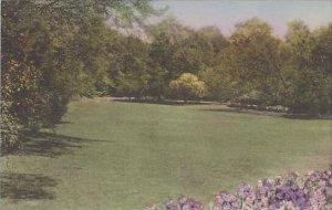 North Carolina Chapel Hill The Arboretum University Of North Carolina Albertype