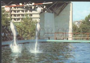113320 Adjara Georgia BATUMI Delphinarium POSTAL stationery