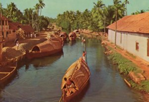 Back Waters Kerala India Boat Postcard