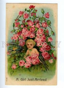 187149 Girl Just Arrived ROSES Swallow Vintage EMBOSSED PC