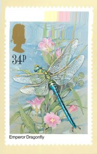 British stamp on Postcard Insects Emperor Dragonfly Gordon Beningfield design