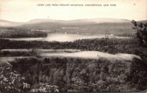 New York Chestertown Loon Lake From Stewart Mountin