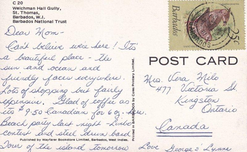 ST. THOMAS, Barbados, W.I., PU-1981; Welchman Hall Gully