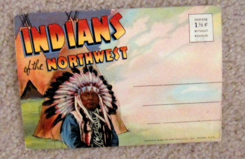 Indians of the Northwest Vintage Linen Poxtcard Folder Native American