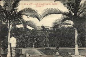 Tyersall From Botanical Garden Singapore Used 1906 Singapore to Rendsburg PC