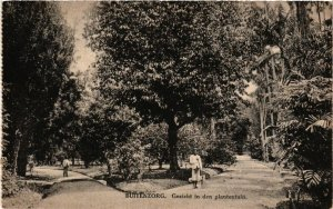 CPA INDONESIA Buitenzorg. Gezicht in den plantentuin (341572)