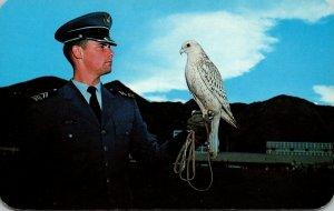 Colorado Colorado Springs U S Air Force Academy Cadet and Falcon