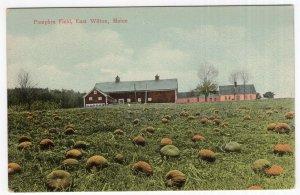 East Wilton, Maine, Pumpkin Field