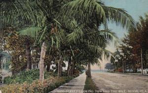 Florida Miami 12th Street Looking Toward The Bay 1909