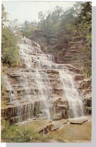 Beautiful Watkins Glen, New York/NY Postcard, Hector Falls