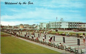 Shuffleboard Courts and Rio Motel at Wildwoods by the Sea, New Jersey postcard