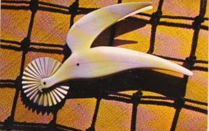 Massachusetts Cape Cod New Bedford Bird In Flight Whaling Museum 1968