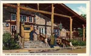 GRAND CANYON NATIONAL PARK, Bright Angel Lodge   Native Deer  c1940s   Postcard