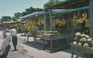 LUQUILLO BEACH, Puerto Rico, 1940-1960's; Tropical Fruit Market