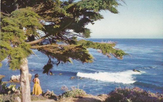 Carmel The Monterey Peninsula California American Airlines Postcard