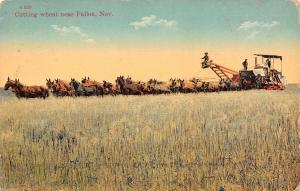 Fallon Nebraska~Cutting Wheat~Farmer Runs Combine~8 Teams of Horses~1915 PC
