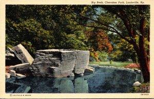 Kentucky Louisville Cherokee Park Big Rock Curteich