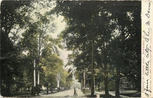 Kewaunee Illinois~Prospect St Looking West~Homes~Boy Wrestles Big Bicycle~1906