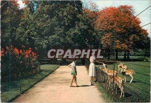 Postcard Modern Lyon Les Biches at the Tete d'Or Park