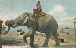 Elephant working Timber , RANGOON , Burma , 1900-10s