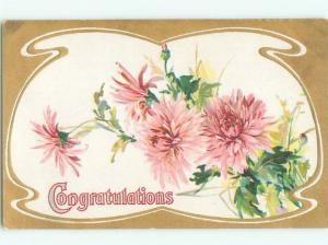 Divided-Back BEAUTIFUL FLOWERS SCENE Great Postcard AA2698