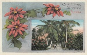 Christmas Greetings from FLORIDA, 1922; A Midwinter Scene