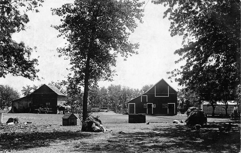 Farm~Barnyard~Two Barns~Dog House~Horses & Wagon~Farmer & Boy~1920 RPPC