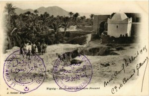 CPA AK Geiser 5 FIGUIG Marabout de HAMMAM Foucani ALGERIA (789652)