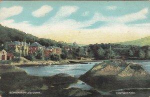 Co. CORK , Ireland , 1909 ; Glengarriff