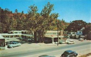 Hot Springs AR Velda Rose Motor Hotel Old Cars Postcard