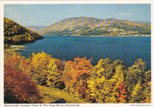 Canada Autumn colors In The Cape Breton Highlands Nova Scotia