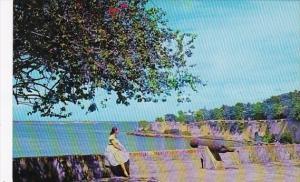 Purto Rico View Of San Juan Harbor