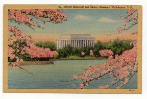 Vintage Postcard Lincoln Memorial And Cherry Blossoms Washington DC 1953 PC4-38