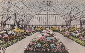 Ohio Cincinnati Irwin M Krohn Conservatory Eden Park Albertype sk4891