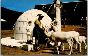 1960s Jefferson, NH SANTA'S VILLAGE Postcard Eskimo Igloo & Santa's Elves