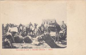 Caravan at rest - Sheikh Othman , ADEN , 00-10s