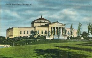 Shedd Aquarium, Chicago, Ill old unused linen Postcard