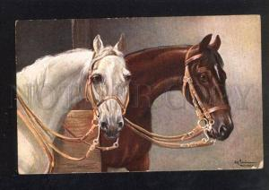 033114 Head of HORSES in Stable. By SCHONIAN vintage PC